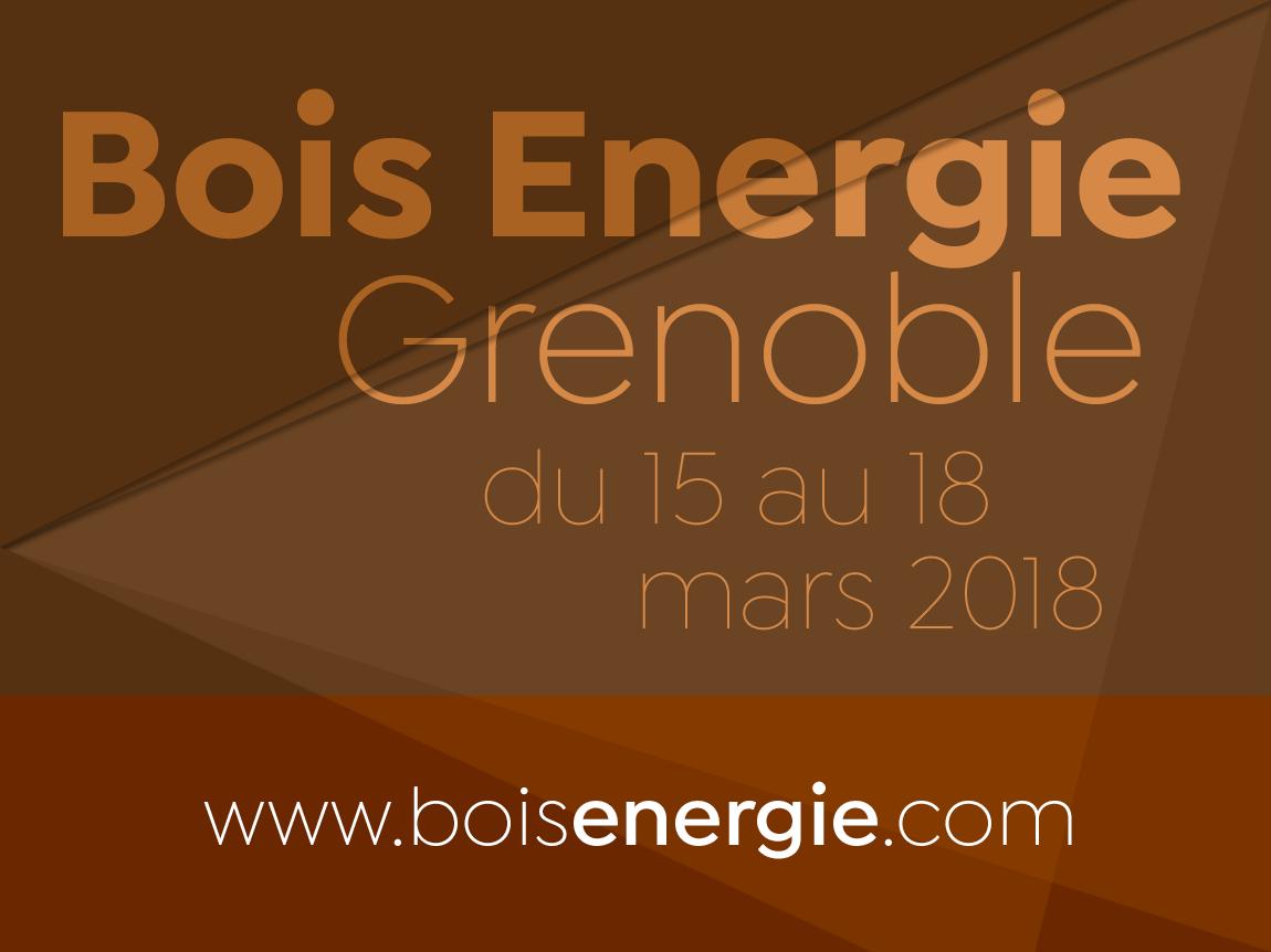 Bois energie grenoble